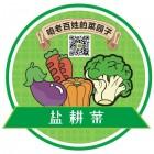 江苏盐耕菜农业科技发展有限公司