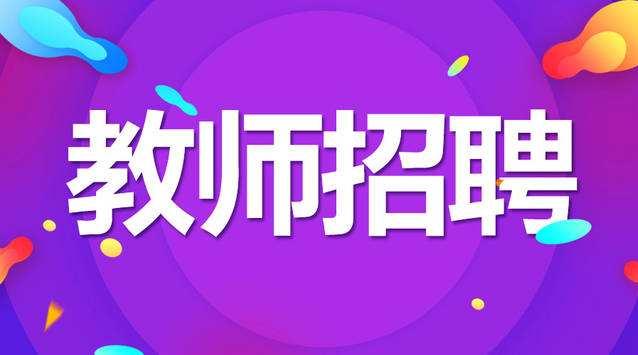 江苏省盐南高新区2020年公开招聘教师公告
